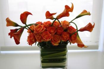 gift-home-1-e1445267873991